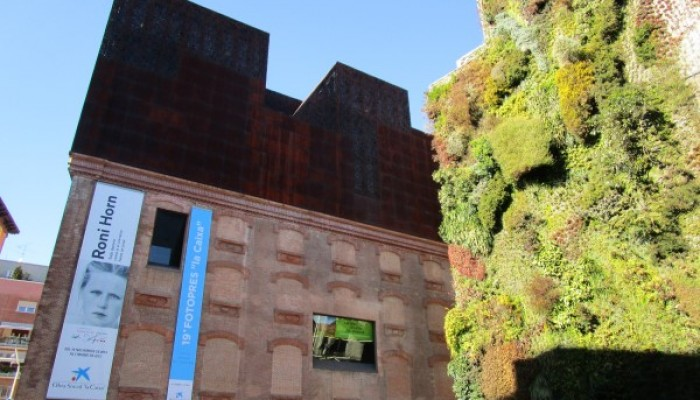 Jardín Vertical Caixa Forúm Rutas Pangea