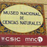Museo de Ciencias Naturales (15)