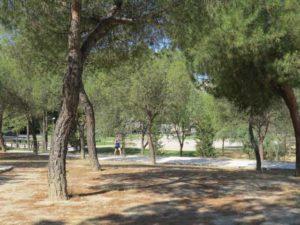 Parque Cuña Verde de Odonell (2)
