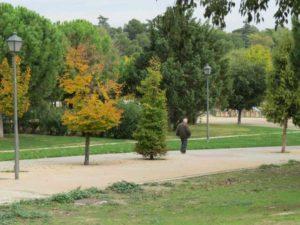 Parque Emperatriz Maria de Austria (15)