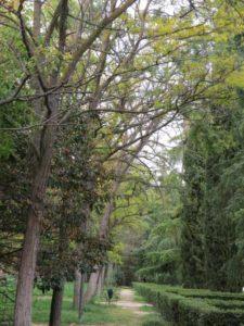 Parque Pradolongo (8)