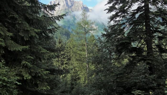 Alpes BTT Salzburgo-Venecia en BTT Rutas Pangea