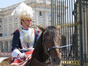 Relevo Solemne de la Guardia del Palacio Real  de Madrid (15)