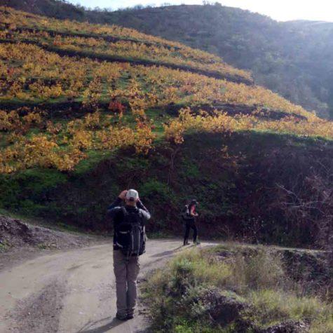 senderismo-costa-tropical-rutas-pangea-otoño