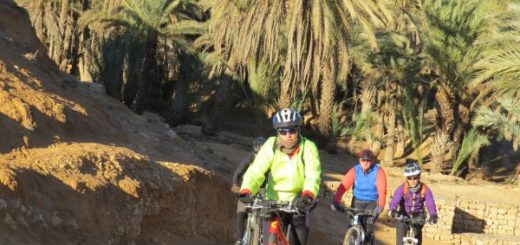 Oasis en bicicleta
