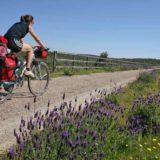 Via Verde de la Jara en bicicleta (4)