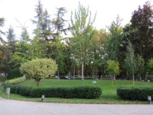 jardin del Museo del Traje-Madrid (5)