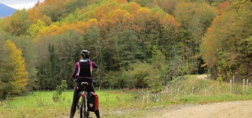otoño en bici por los bosques