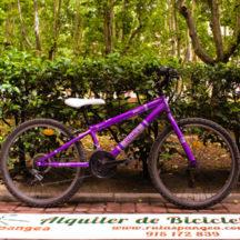 bici berg niño ocasion