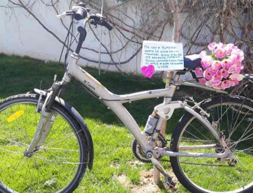 Bicis para Almería un proyecto solidario que busca nuevos usos para bicis olvidadas